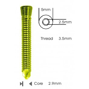Safety Lock (LCP) Screw 3.5mm Self Tapping & Self Drilling Titanium